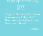 33.Yoga is the cessation of the movement of the mind.