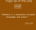 Wellness is a connection of paths