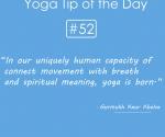 Yoga-born