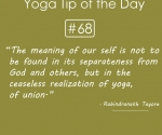 the ceaseless realization of yoga
