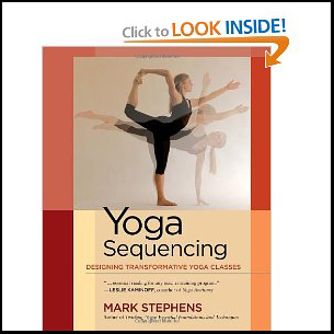 Yoga Book by Mark Stephes